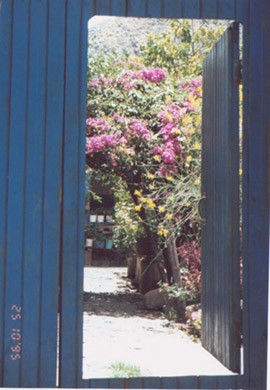 Blue-door of Peru